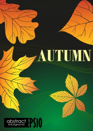 Abstract autumn background.  illustration. Stock Vector - 16957381
