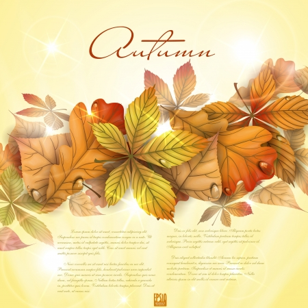 Autumn background with leaves.  Vector illustration. Illustration