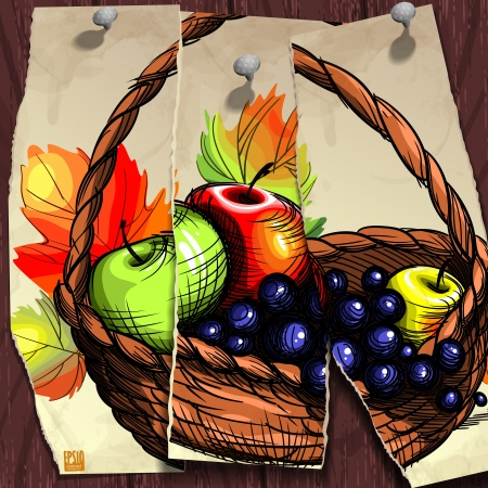 Autumn banner. Vector illustration. Vector