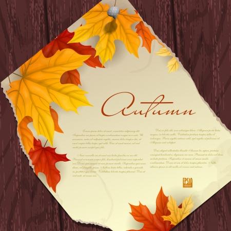 arbre automne: Fond d'automne avec des feuilles. Vector illustration.