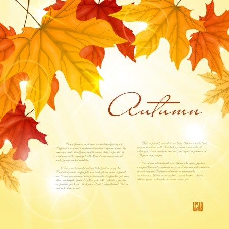 fall border: Autumn background with leaves.  Vector illustration. Illustration