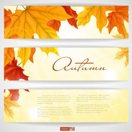 Autumn background with leaves.  Vector illustration Vector