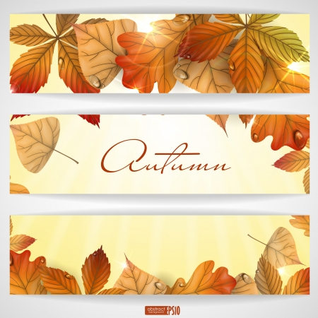 Autumn background with leaves.  Vector illustration. Stock Vector - 16977512
