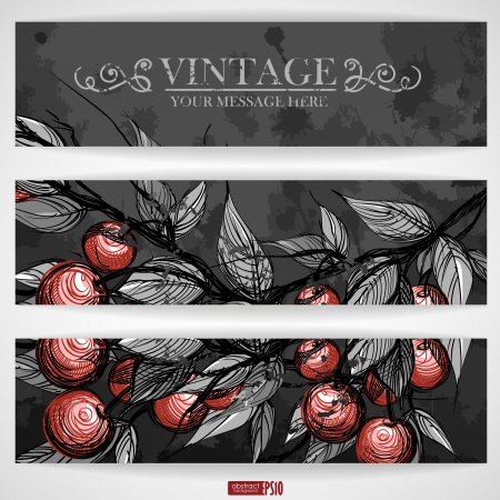 Cherries with leaves. Vector illustration. Eps 10. Stock Vector - 16977681