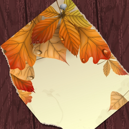Autumn background with leaves.   photo
