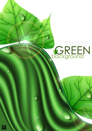 Eco green background with leaves Stock Vector - 17885016