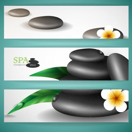 spa stones: Spa stones with frangipani flower   Illustration