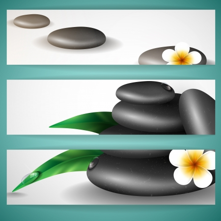 Spa stones with frangipani flower   photo
