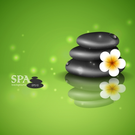 Spa Stones With Frangipani Flower. Vector Illustration. Eps 10. Vector