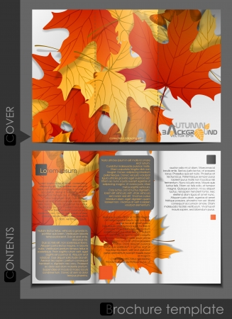 Brochure Template Design.  Vector Illustration. Eps 10. Vector