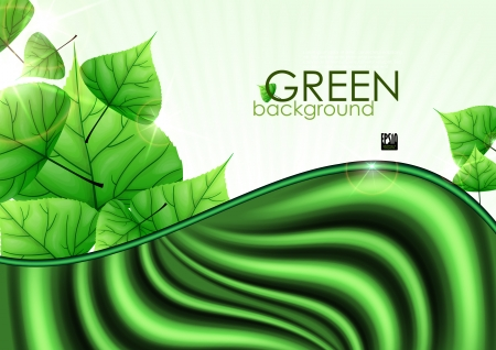 Eco Green Background With Leaves. Vector Illustration. Eps 10. Vector