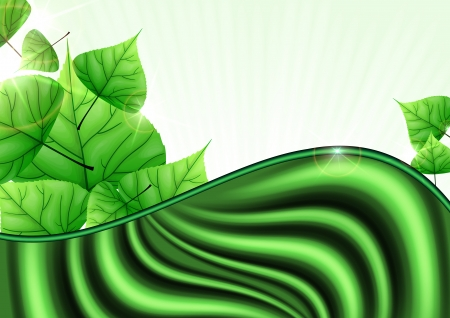 Eco Green Background With Leaves. photo