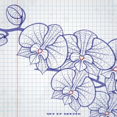 Set of Hand Drawn Various Elements On Lined Sketchbook Paper. Vector Illustration. Eps 10.