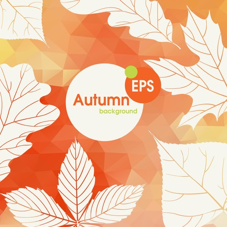 background herfst: Autumn Background With Leaves