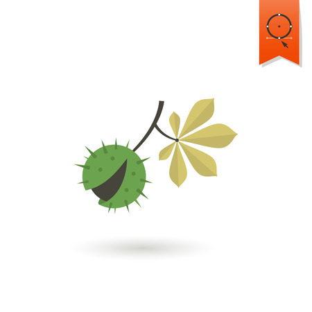 chestnut: Chestnut and Chestnut Leaves. Single Flat Autumn Icon . Simple and Minimalistic Style. Vector