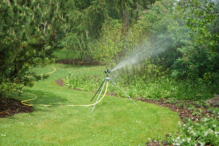 A professional irrigation system pours your plants individually and your lawn evenly. garden irrigation