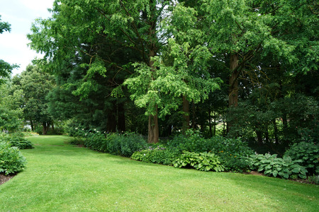 Public well maintained park in germany in the summer to recover