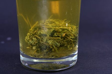 Jiaogulan herb is also referred to as the herb of the immortals and sold. Standard-Bild