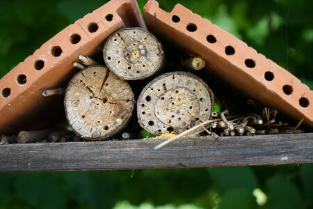 An insect hotel can be easily made from a variety of materials and is very good at watching the insects Фото со стока