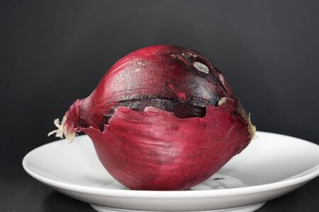 Onion with macro lens photographed in best quality