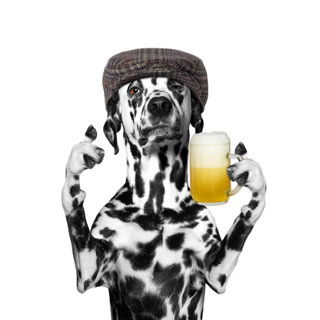 beerfest: dog drinks beer and greeting somebody