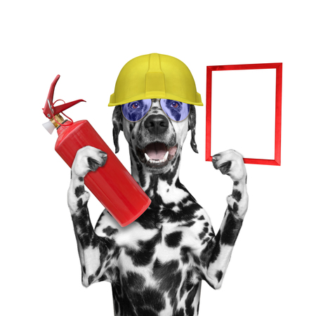 rescuer: Dog rescuer volunteer firefighter -- isolated on white