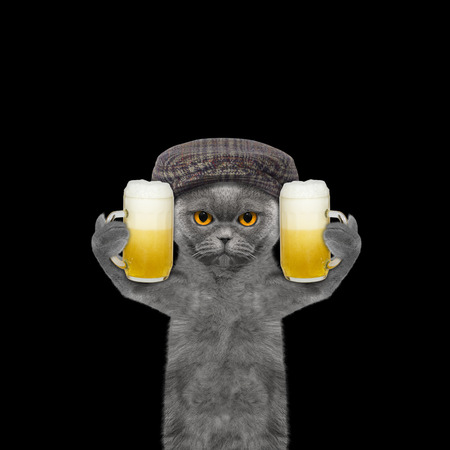 beerfest: Cat drinks beer and greeting somebody -- isolated on black