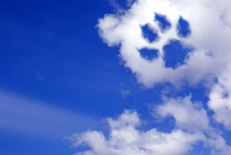 dog paw trail in the sky clouds Banque d'images