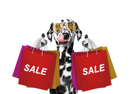 Cute dog goes shopping and sales -- isolated on white