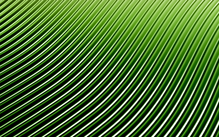 glade: Green abstract image of lines background. 3d render