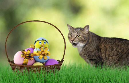 eastertime: happy playing easter Cat with eggs