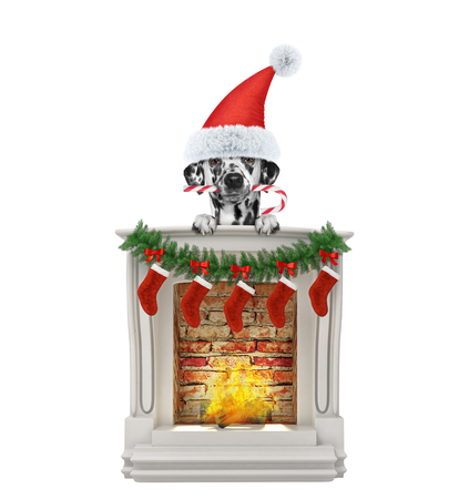 Dalmatian dog christmas candy near fireplace. Isolated on white