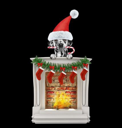 Dalmatian dog christmas candy near fireplace. Isolated on black