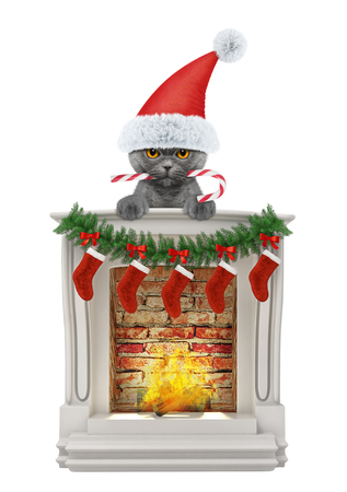 Cat with christmas candy near fireplace. Isolated on white