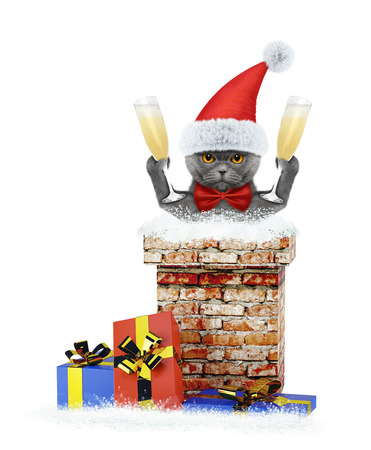 Cat with glass of champagne climbs out of chimney. Isolated on white background