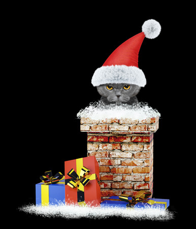 Angry santa cat climbs out of chimney. Isolated on black background