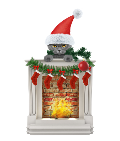 Cat with Christmas tree and ball near fireplace. Isolated on white background