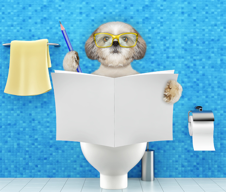 Dog sitting on a toilet seat with digestion problems or constipation reading magazine or newspaper and writing