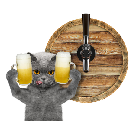 Cute cat with a glass of beer and barrel. isolated on white