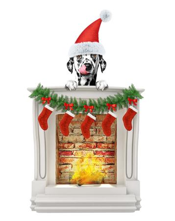 Dalmatian dog near fireplace. Isolated on white