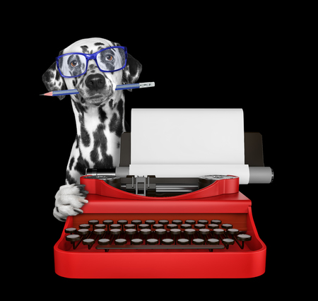 Dalmatian dog is typing on a typewriter keyboard. Isolated on black Stock Photo