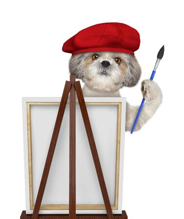 Cute shitzu dog is a painter artist. Isolated on white