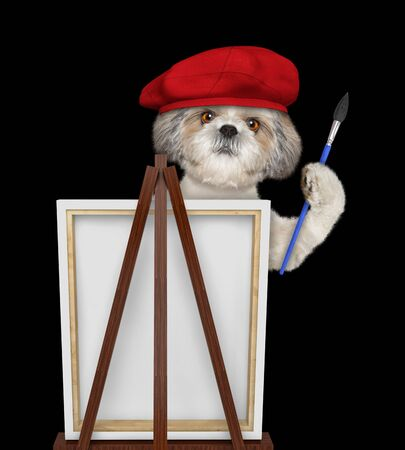 Cute shih tzu dog is a painter artist. Isolated on black