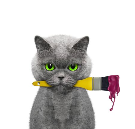 Cat as a painter with brush and red color. Isolated on white