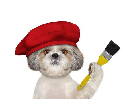Shih tzu dog as a painter with a brush. Isolated on white