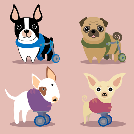 Set of handicapped disabled dogs