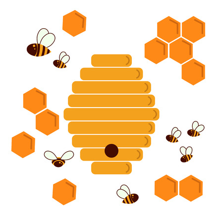 Icon bee hive and honeycomb vector illustration