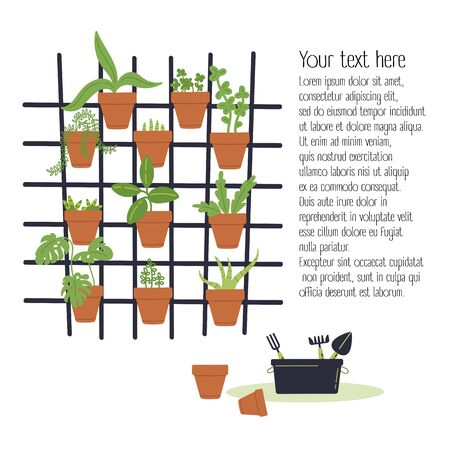Decorative vertical garden concept.Plants grow in pots on a grid.Box with garden tools.Environment friendly eco design.A new way to decorate the interior with house greenery.Modern hobby.Vector flat  Ilustracja