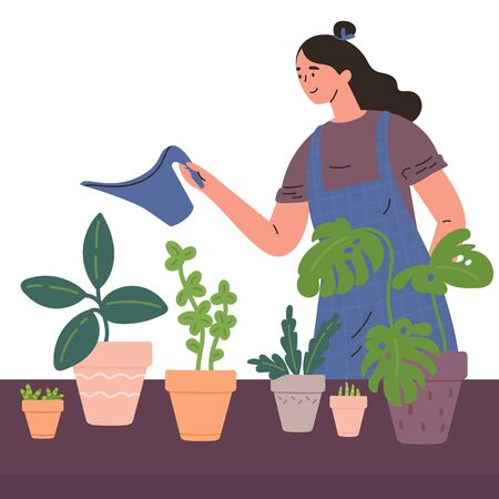 Young woman watering houseplants from a watering can in a cosy home atmosphere.Woman caring for indoor plants.Hobby.Colorful character.Vector illustration in flat style.