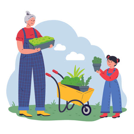 Grandmother and kid working in the garden with equipment and a pot of greenery.Flat vector illustration.Gardeners with microgreens.Pleasant active rest in the garden.Plants cultivating and nursery.